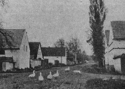 Dorfstraße Podiebrad